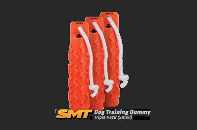 prod-dummy_smt-triple-sm